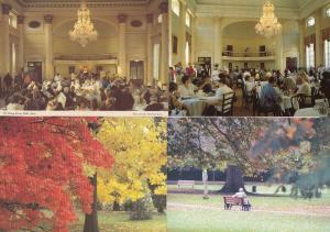Restful Moments in Bath Avon Pump Room Flowers 4x Postcard s
