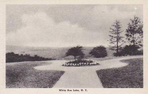 New York White Roe Lake Albertype