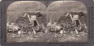 SV: 1910s ; Lapp Home & Family , TROMSOE , Norway
