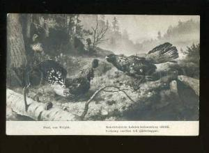 127766 HUNT Capercaillie by Ferd. Von WRIGHT Vintage PC