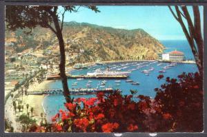 Santa Catalina Island,CA