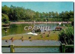 Postcard Modern Knokke - Heist The ornithological reserve Zwin