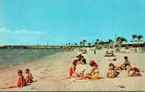Florida Ruskin Scene Along Bahia Beach