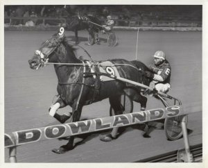 MEADOWLANDS RACETRACK, Harness Horse Race , SIR IKE Wins 1983