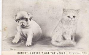 Vincent Colby Puppy & Kitten Honest I Haven't Got The Nerve 1910