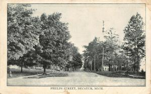 Decatur Michigan~Homes on Either Side of N Phelps St~Plump Shade Trees~1911 B&W