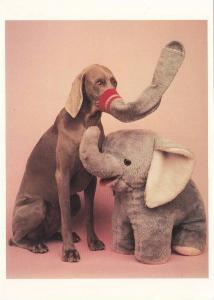 Stuffed Elephant & dog , ELEPHANTS , 1990s