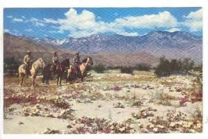 Three Men On Horses, Springtime On A Desert Playground, Lofty San Jacinto, Ca...