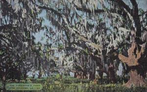 Louisiana New Orleans The Pakenham's Oaks