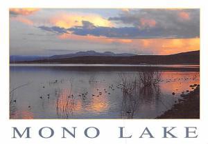 Mono Lake -
