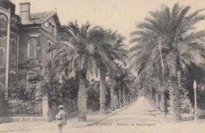 Hyères (Var), France, 1900-1910s : Avenue de Beauregard