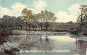 Easton Pennsylvania~Bushkill Park Boat House & Dam~1910 Postcard