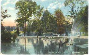 View in White's Park, Concord, New Hampshire, NH, Divided Back