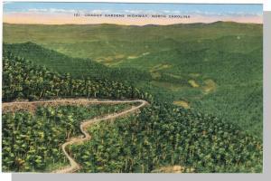 North Carolina/NC Postcard,Craggy Gardens Highway,Near Mint!