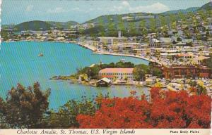 St Thomas Aerial View CHarlotte Amalie