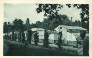 CPA VIETNAM Institut National d'Agronomie Coloniale (119183)