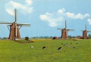 Netherlands Leidschendam Stepwise Pumping Mills Driemanspolder Postcard