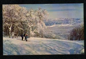 NC Beech Mountain Mtn BANNER ELK NORTH CAROLINA Ski Skiing Postcard