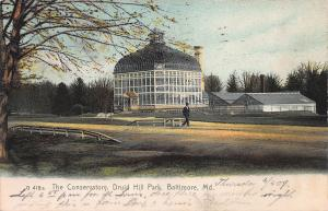 The Conservatory, Druid Hill Park, Baltimore, Maryland, Postcard, Used in 1907
