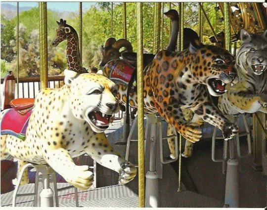 Wild Cats on Marilyn's Merry-Go-RoundThe Living Desert Palm Desert California