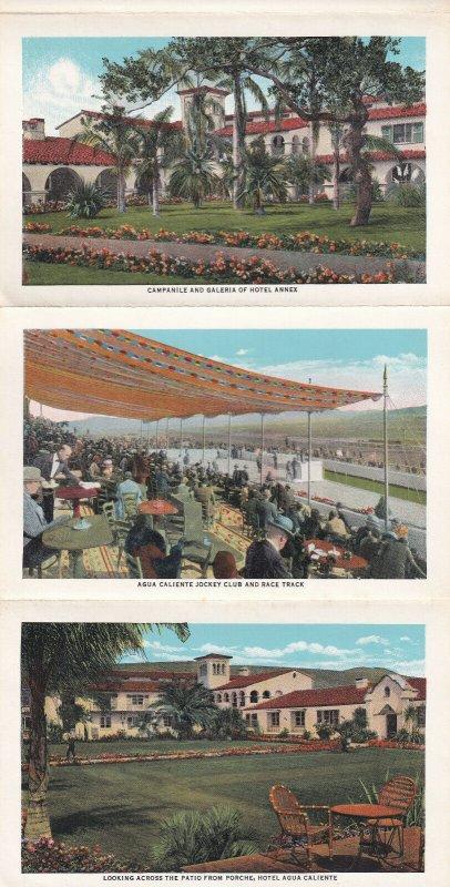Souvenir Of AGUA CALIENTE, Mexico, Folder Postcard, PU-1934