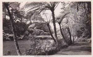 RP: Pukekura Park, New Plymouth , New Zealand, 20-40s