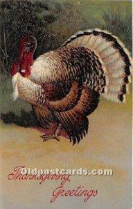 Artist PFB Thanksgiving Greetings Unused