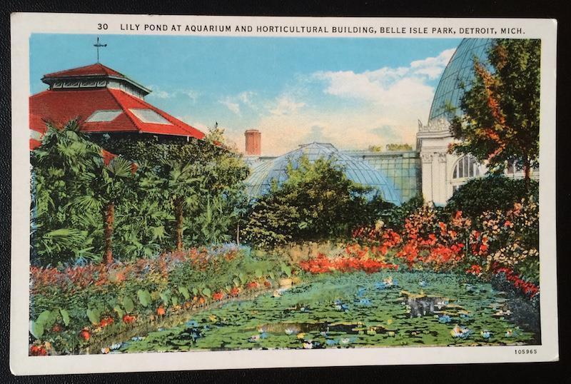 Lily Pond at Aquarium and Horticultural Building, Belle Isle Park, Detroit Mich.