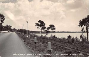 Mount Dora Florida Lake Dora Highway 441 Real Photo Postcard J47150