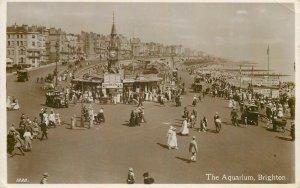 Brighton Aquarium photo postcard