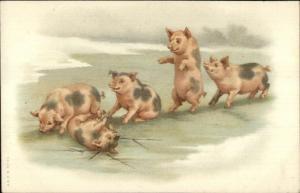 Fantasy Pigs in Winter Play & Break Ice c1910 MISCH & Co Genre Series 17 c1910