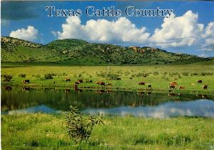 TX - Texas Cattle Country
