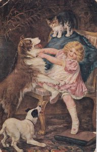 Kiss and be freinds, Girl holding back Collie Dog from Cat, 1900-10s