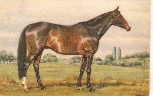 Alderson. A Horse Fine painting, vintqge  Swiss postcard