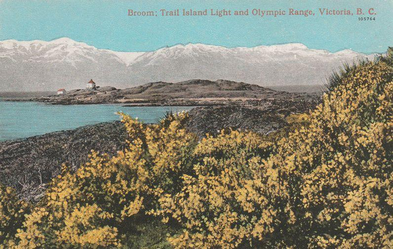 Trail Island Light House & Olympic Range Victoria BC British Columbia Canada WB