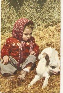 Little girl with a calf Nice vintage Spanish postcard