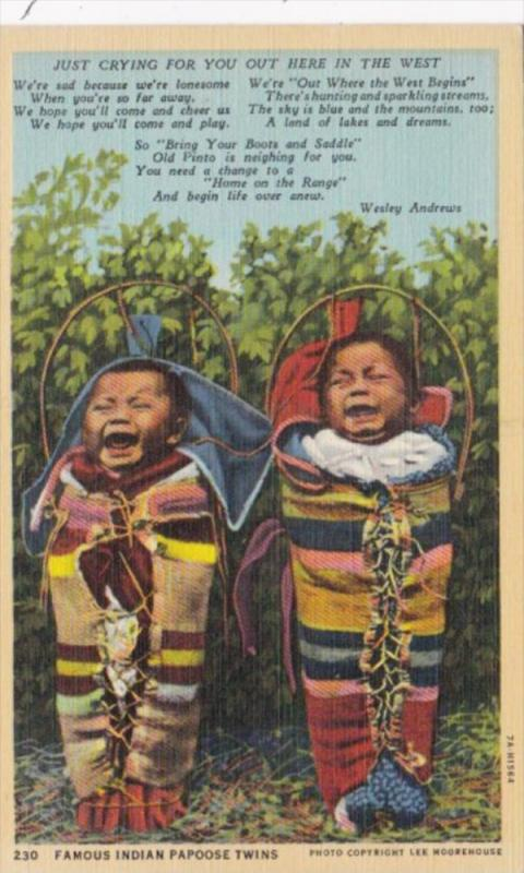 Famous Indian Papoose Twins Just Cryling For You Curteich