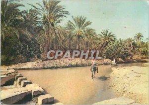 Postcard Modern Tozeur watershed