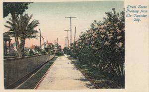 GALVESTON, Texas, 1898-1907; Street Scene Greeting from The Oleander City