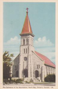 Pro Cathedral of the Assumption, North Bay, Ontario, Canada, 10-20s