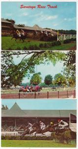 3 - Showboat Horse Racing, Saratoga NY