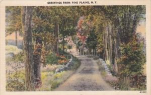 New York Greetings From Pine Plains 1948