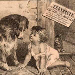 1880's Vaseline Elixir Vitae Child Collie Dog And Cat Chesebrough Trade Card