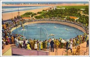 FL - Marine Studios, Marineland