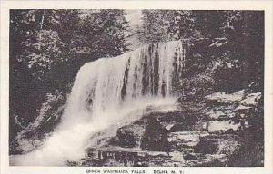 New York Delhi Upper Wautauga Falls Albertype