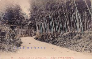 1908 Nagasaki Japan Postcard: Bamboo Road of Mogi, Rare!