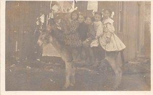 Children sitting on a donkey Children Unused