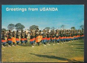 Uganda Postcard - Greetings From Uganda - Acholi War Dance   T5059