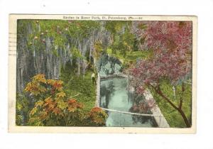 Ravine in Roser park, St. Petersburg, Florida,PU-1924