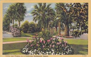 Palms And Flowers In A California Residential District Los Angeles California...